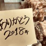ありがとう2018年!! 今年一年を漢字で表すと何?